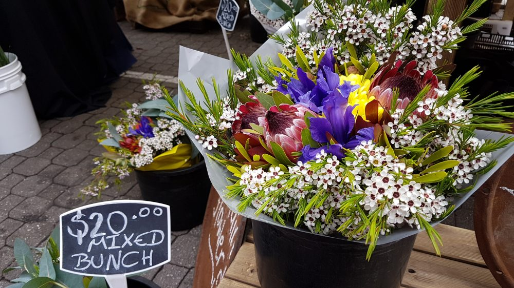 Tasmania Salamanca Flowers