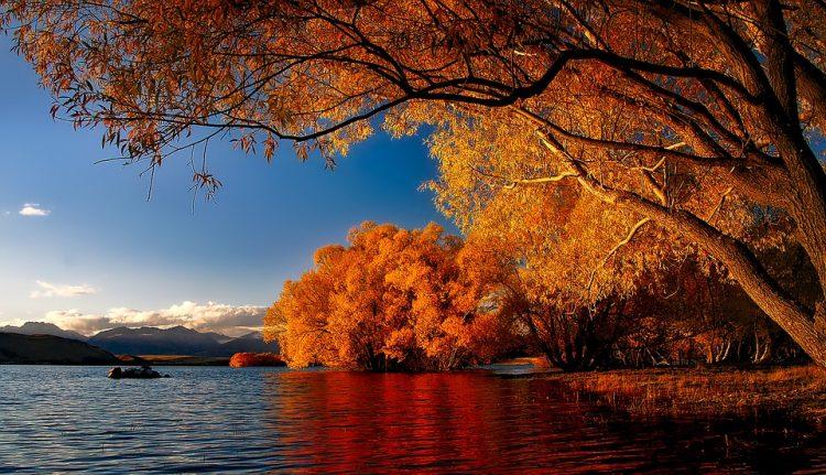 new-zealand-lake tekapo