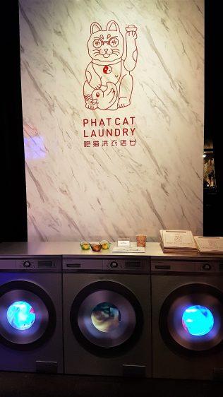 Phat Cat Laundry Entrance