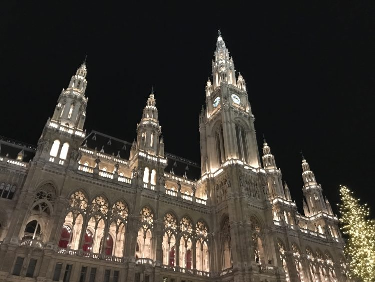 Vienna Rathaus at Night